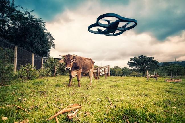 drones lawsuits florida surveillance law