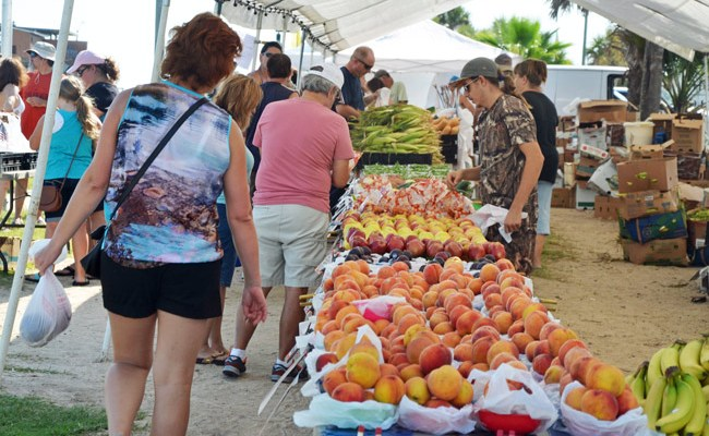 farmers markets food stamps