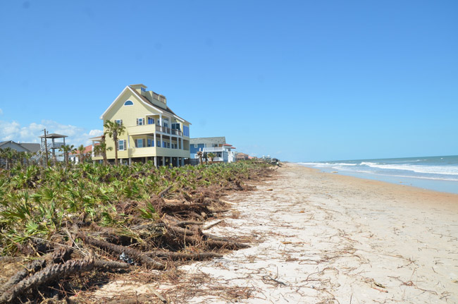A new Florida law could potentially allow private property owners with beachfront property to put up No Trespassing signs on dry-sand areas of the beach, above the mean high-tide waterline, countering decades of customary use of the beaches--and prohibitions of such signs in Flagler. (© FlaglerLive)