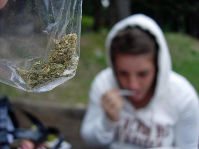 pot decriminalization