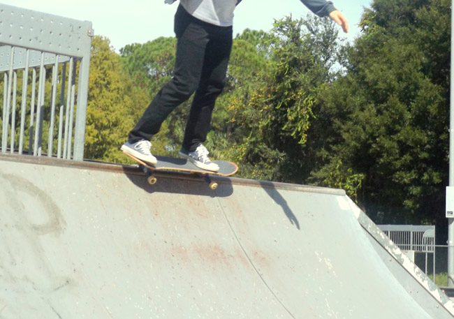 wadsworth skate park