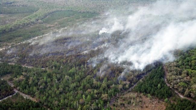 A view of the fire from Fire Flight. (Dana Morris)