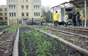 urban farms florida