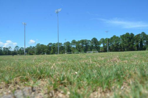 soccer fields wadsworth park