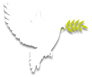 Flag Peace Day Newsletter January 2018