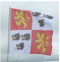 Cadwgan banner