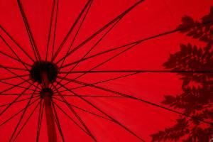 日傘と雨傘の違い
