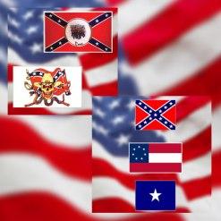 Confederate/ Rebel