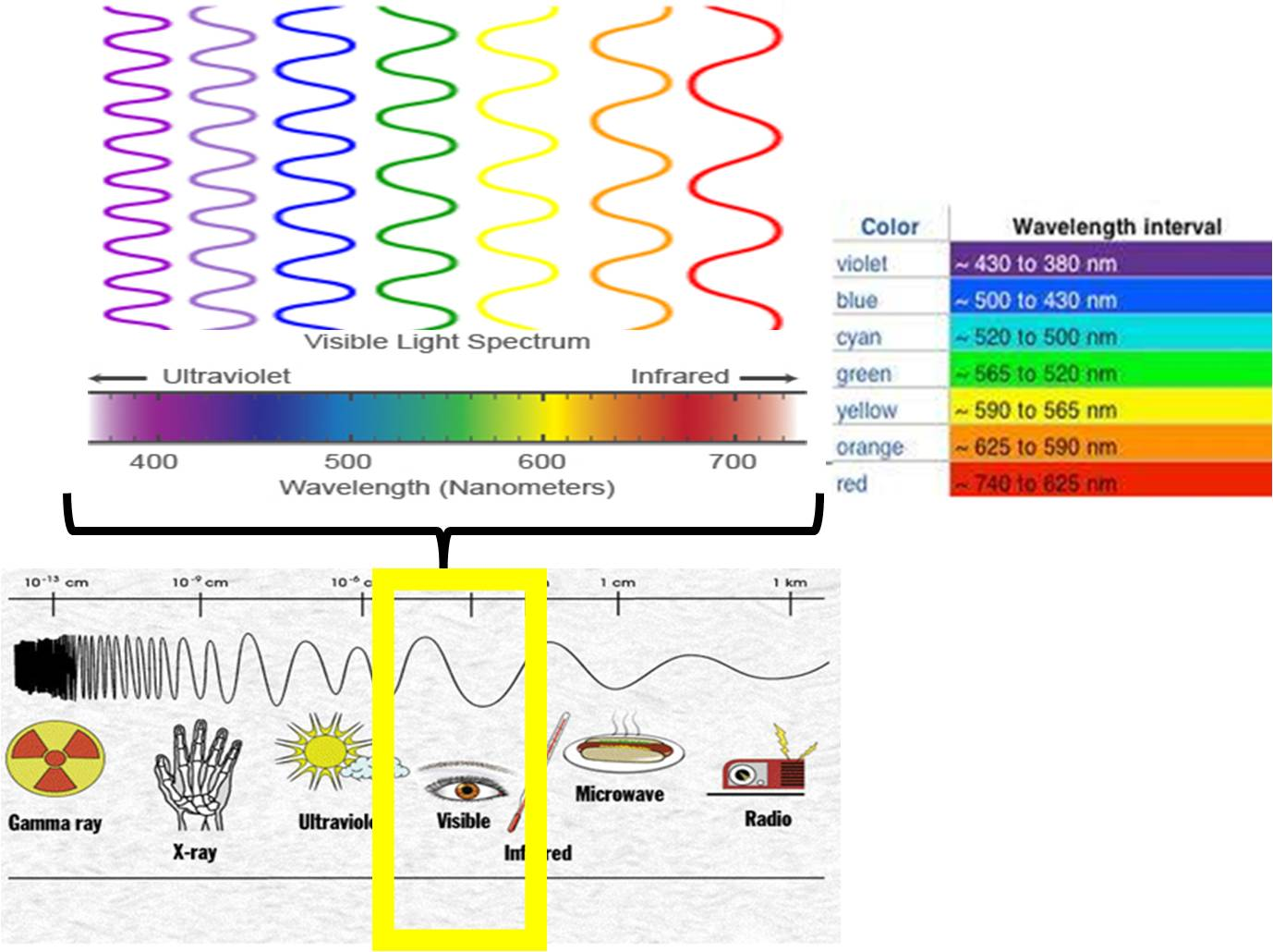 Light Emissions And Wavelengths