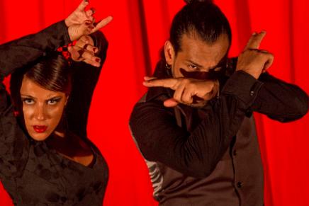 """Toro Negro"" une flamenco à literatura de Clarice Lispector"