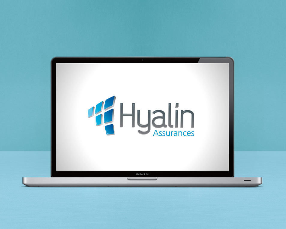 logo Hyalin validé