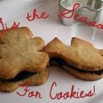Cranberry Oat Cookies & Nutri Ninja | Ninja Blender System #Review