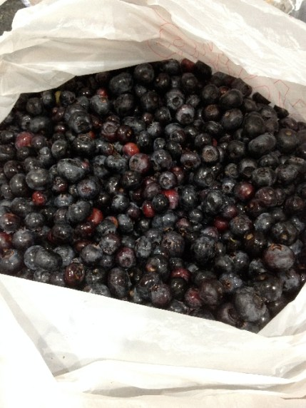 bag_berries
