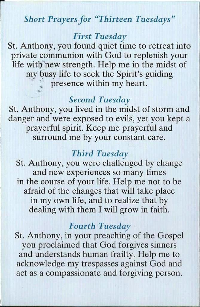 Archdiocese Of Galveston Houston Tx Shared Thoughts