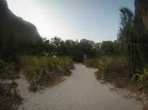 Maya Beach Path