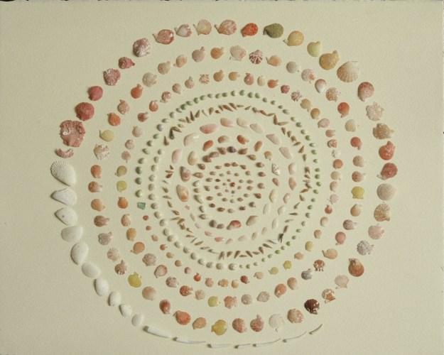 'Shell Spiral'