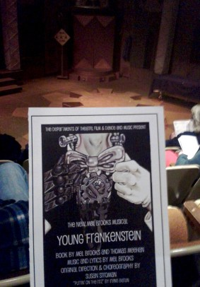 YoungFrankensteinProgram