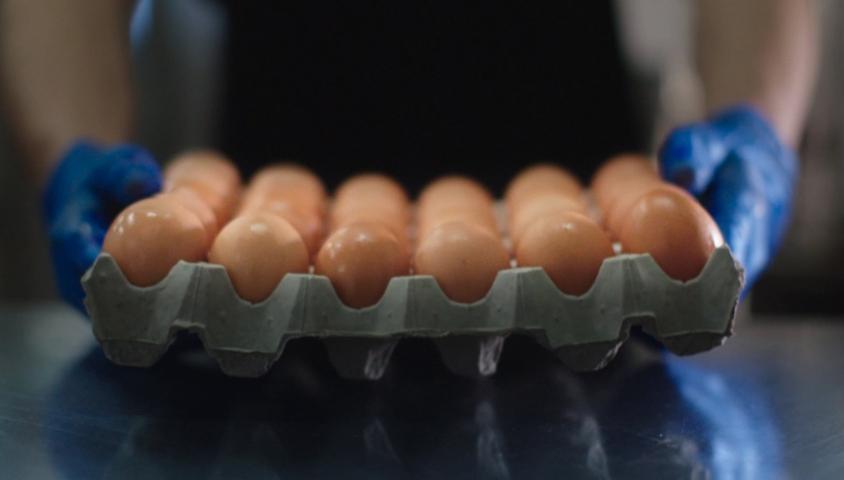 A Better Egg Story