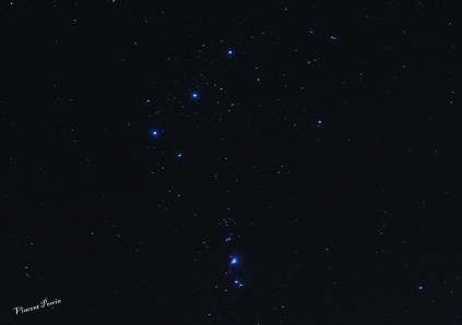 Orion (6)