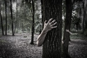 hands-in-the-forest