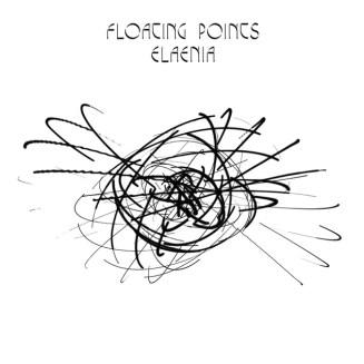 5. Floating Points - Elaenia