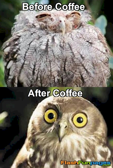 Before Coffee After Coffee Ecards For Facebook