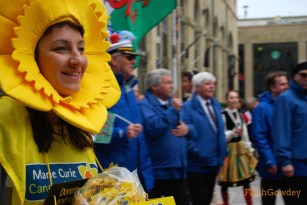 Daffodils to benefit the Marie Curie Cancer Center