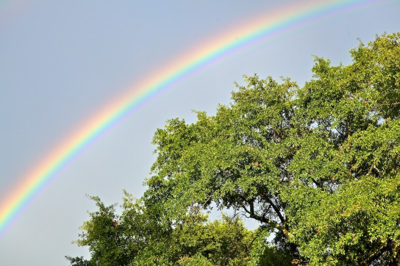 A rainbow appears over Greenville Circle in Columbia, S.C., on Sunday, Sept. 25, 2011, following a severe thunderstorm. (Brett Flashnick/flashnick visuals, llc.)