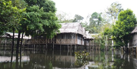 Our amazing home in the Jungle