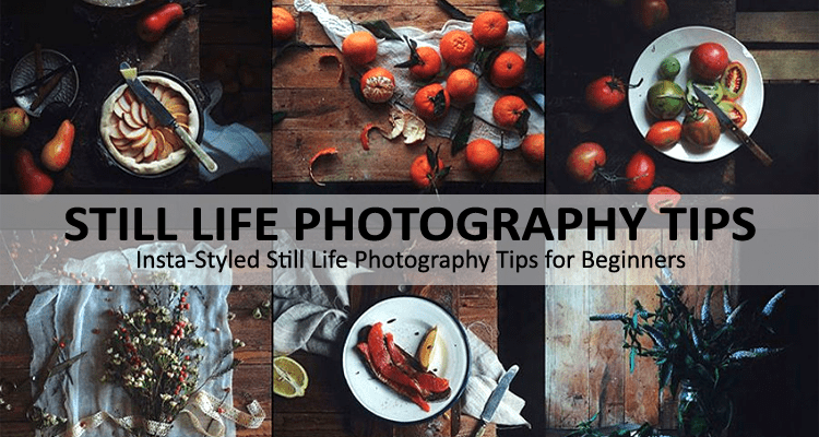 Still Life Photography Tips