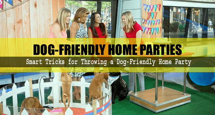 Dog-Friendly Home Parties