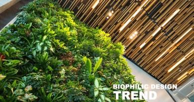 Biophilic Design Trend Dubai