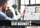 Best SEO Agency in UAE