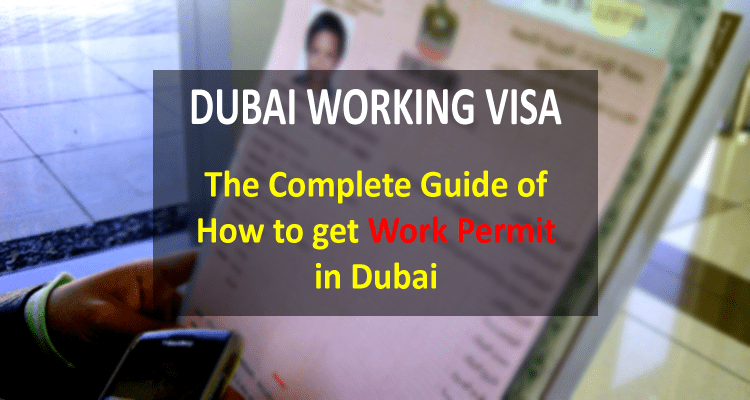 Live study and work in dubai