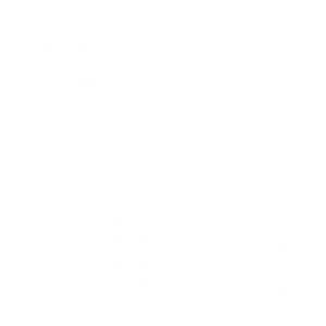 Phone Icon - Call Now