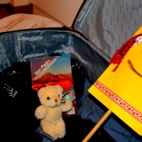 Edward T Bear returns from Lost Luggage Land