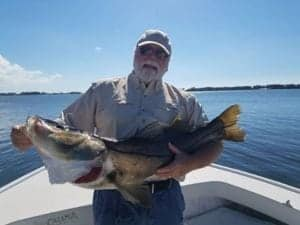 Snook to Reopen in Bradenton Gulf Waters