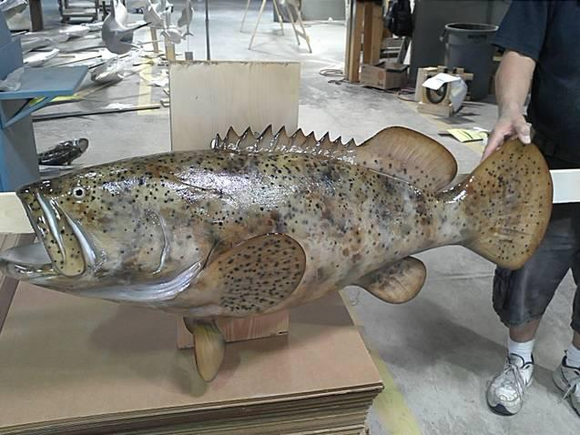 Ronnies Grouper Mount