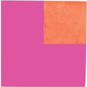 decortiles-calu-mexico-rosa-20x20cm-flavia-medina-arquitetura
