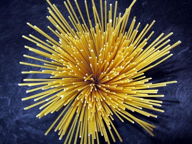 spaghetti-110226_640
