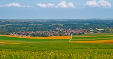 Tour Champagne and Bordeaux with BKWine in Spring 2017