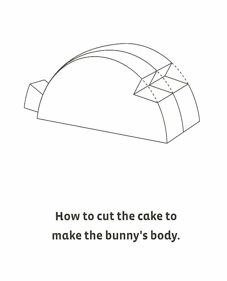 bunny-diagram