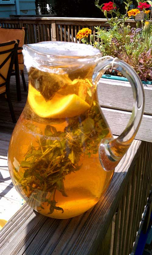 Recipe for Herb Infused Sun Tea - You can use any combination of herbs you like, but this is one of my favorites. If you aren't able to drink all the tea, you can also freeze it in ice cube trays to add a nice flavor to plain water.