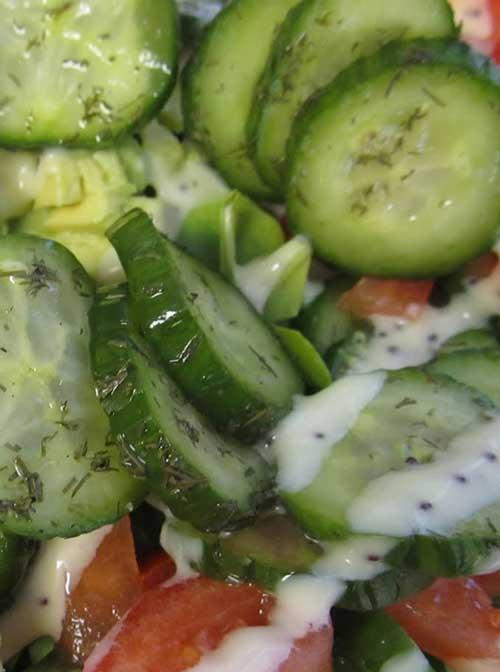 Cucumber Garden Salad