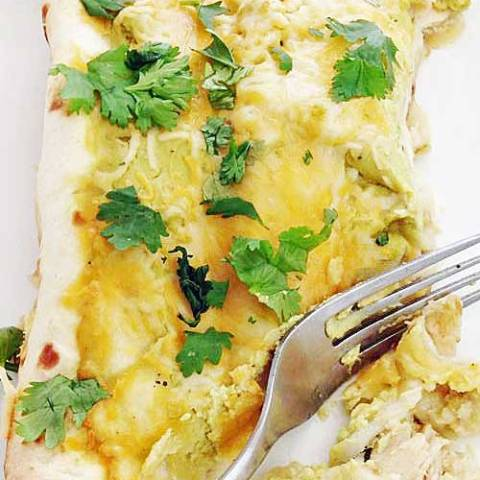 Fall off the bone chicken mixed with salsa verde and topped with a avocado yogurt sauce to make one creamy enchilada.