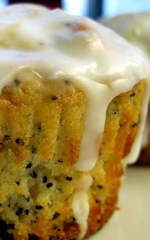 I like poppy seeds. I like lemony baked goods. And I love icing! Put those three elements together and bake them into cute little Lemon Poppyseed Muffins and you'll win my heart!