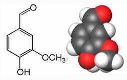 Resultado de imagen para vainillina molecula