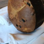 Panettone are layed on their side on rolled up dish towels to cool down