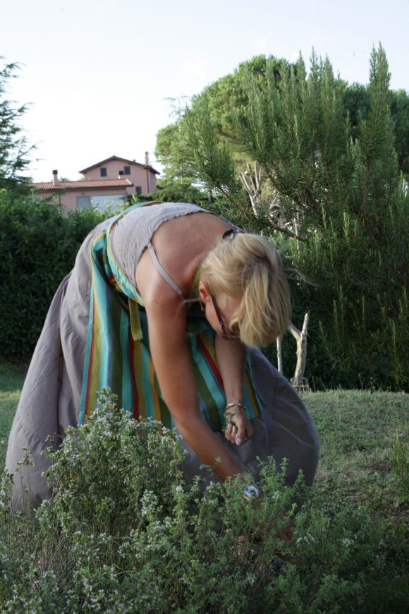 picking marjoram for Ravioli caprese