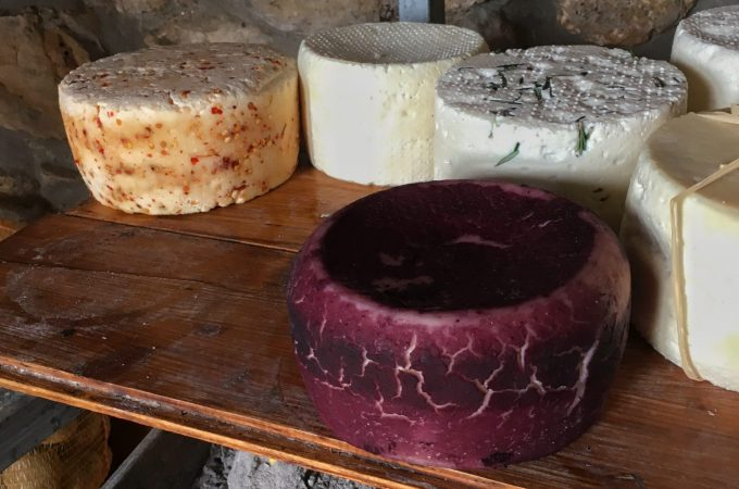 Pecorino cheese producer in the Cesanese wine producing area near Anagni